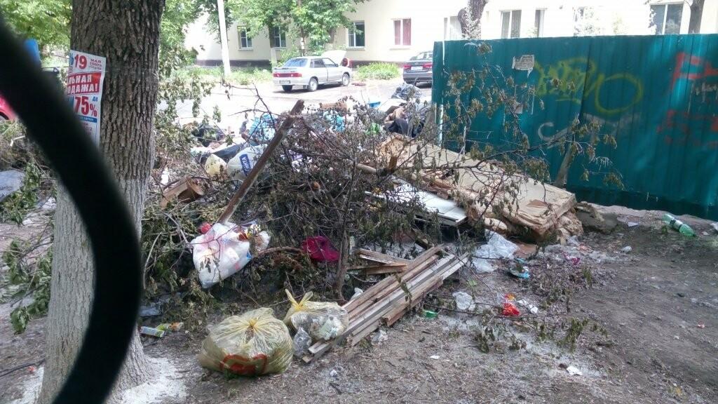 Улицы Таганрога утопают в мусоре, фото-2