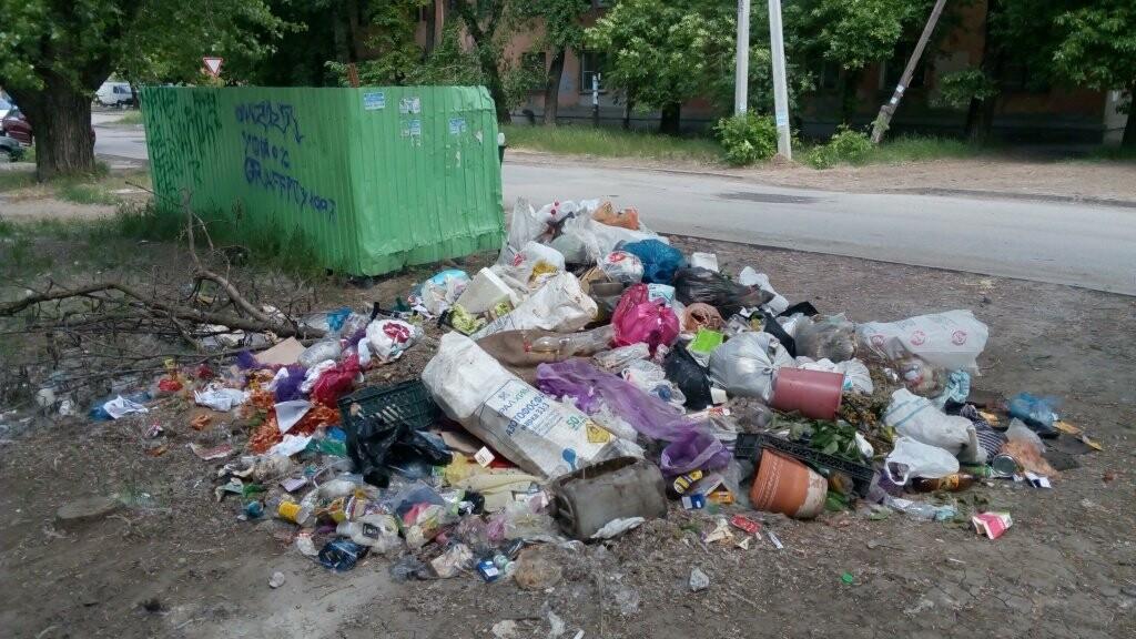 Улицы Таганрога утопают в мусоре, фото-1