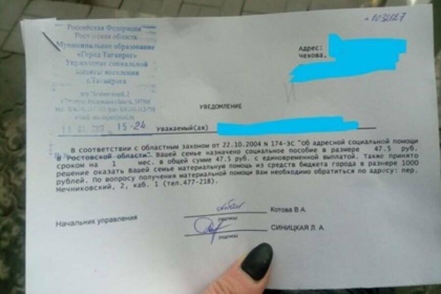 Таганрогские чиновники выделили многодетной матери-одиночке пособие в 47,5 рублей, фото-2