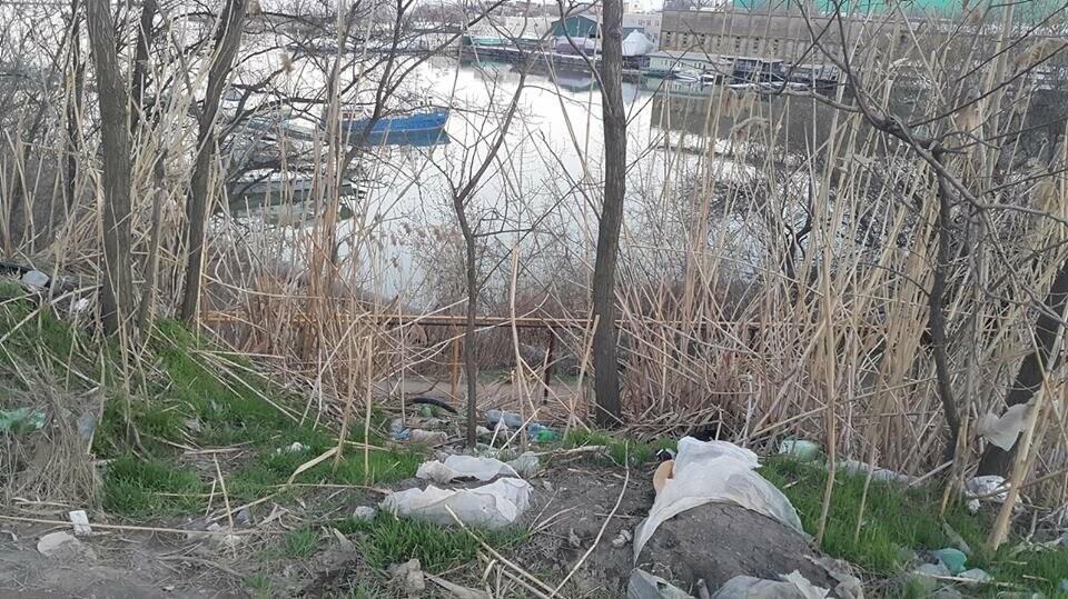 В Таганроге въезд в яхт-клуб «5 причал» похож на мусорную свалку, фото-1