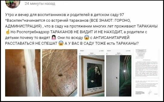 В одном из детских садов Таганрога горожане обнаружили тараканов, фото-1